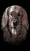 Reeves PPCFM4 Собака набор-мини